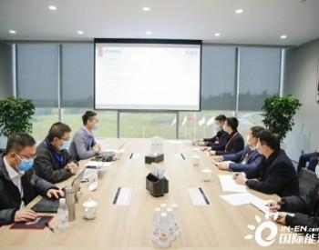 <em>通威</em>太阳能成都公司顺利通过知识产权管理体系认证审核