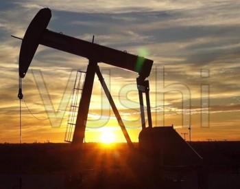 智利官员:俄罗斯可成为智利的重要<em>石油供应国</em>