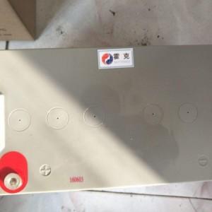 英国狮克蓄电池LGP12/100