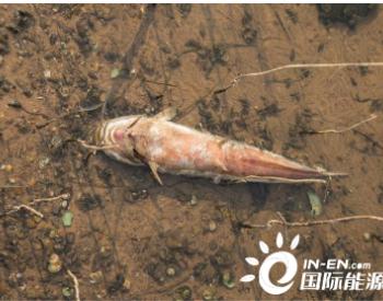 重金属<em>污染</em>农田<em>土壤修复</em>效果评价指标