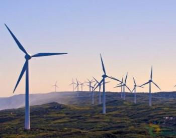 重磅!浙江新能<em>IPO</em>首发获通过!募资14.1亿建设海上风电项目!