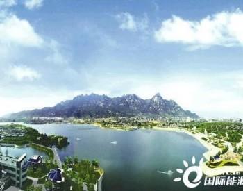 山东:激发新能源澎湃动力