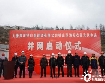 贵州海发<em>农业光伏电站</em>举行并网启动仪式
