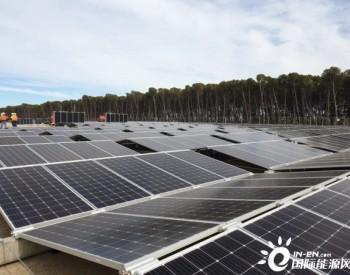 """澳洲将启用""""世界上最大""""的便携式<em>太阳能电池板</em>"""