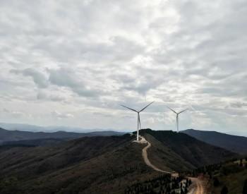 沙漠:或许是新能源未来希望之地