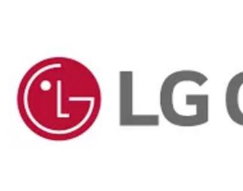 100亿美元巨额投资!<em>LG</em>将在印尼打造一体化电池工厂
