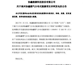 协鑫能科高州燃机<em>项目</em>投入商运 年产值6亿元