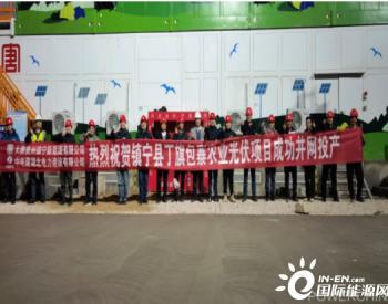 贵州镇宁县包寨100MW<em>农业光伏电站</em>项目成功并网投产