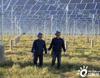 国网<em>吉林</em>白城供电为清洁能源发展作出积极贡献