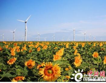 2020年<em>吉林电网</em>外送电量等三项指标创历史新高 风电发电量同比增长13.1%