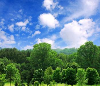 碳中和愿景下能源转型路径研讨会暨第二届清华大学∙大同能源转型国际论坛