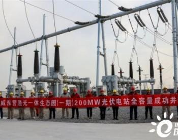 """通威东营200MW""""<em>渔光一体</em>""""光伏发电项目顺利并网"""