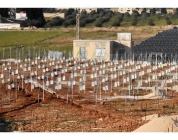 叙利亚重建:拟建<em>太阳能电站</em>