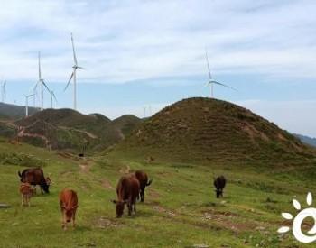 机构预测中国风机<em>价格</em>再降逾10%,进一步下降到单位千瓦2500元以下