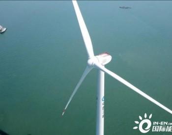 2020全球最佳<em>风电机组</em>来了!东方风机榜上有名