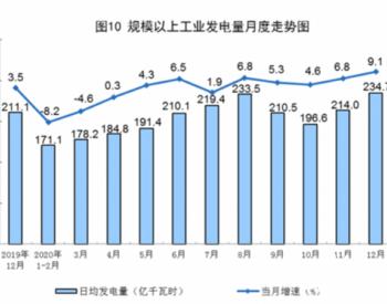 2020年12月能源生产情况:发电量同比增长9.1%