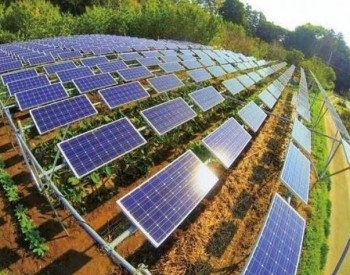 EIA:美国2021年将并网15.4GW公用事业光伏<em>项目</em>,将创下历史新高