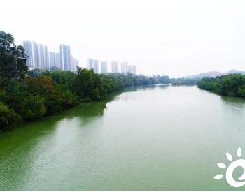 广东惠州大亚湾区坚决打赢三大保卫战守护碧水蓝天净土