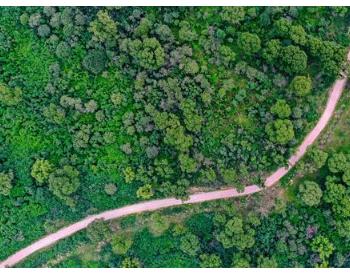 2021年山西省将实施碳达峰、碳中和行动