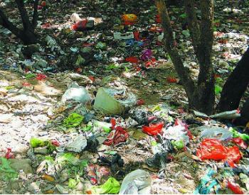 湖北省黄石市城市生活垃圾处理费征收管理办法公开