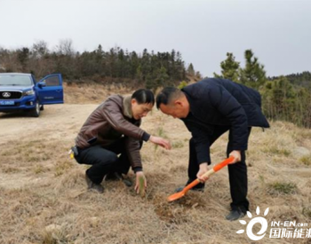 """让风电更""""绿色""""!湖北广水15个风电项目生态修复完成七成"""