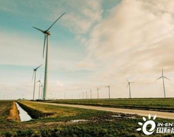 """清洁能源遍地开花 让青海更""""风光"""""""
