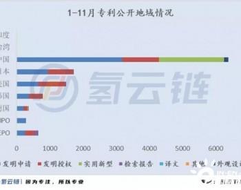 2020燃料电池领域专利数榜单:格罗夫、<em>潍柴动力</em>、大化所为榜首,中国以超6000件傲居全球