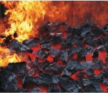 2020年全国<em>煤矿</em>发生事故123起,死亡228人