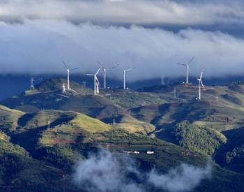 轻木价格最高狂泻50%:2021<em>风电</em>市场开局或疲软