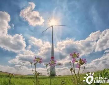 由于风力发电的增加 中国对全球可再生能源发展贡献显著