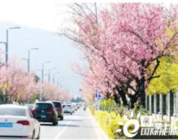云南昆明坚持绿色发展理念 促进人与自然和谐共生