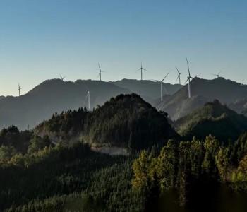 风电是实现碳中和目标的主力军