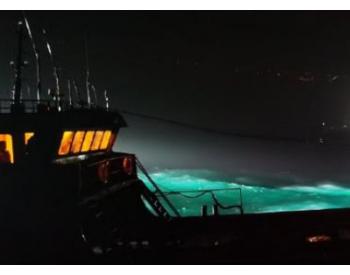 浙江海警破获特大海上成品油走私案 端掉11个走私团伙 案值逾12亿
