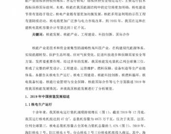 中国核能年度发展与展望(2020)