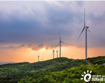 碳中和,风电光伏谁主导?