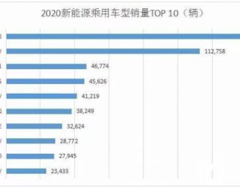 预估2021国内<em>新能源乘用车</em>发展趋势