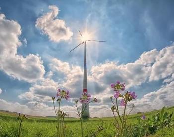 2020年度可再生能源电力超额消纳量省间交易正式开市