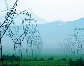 2021年度預測 | 電網: 樞紐應有新作為