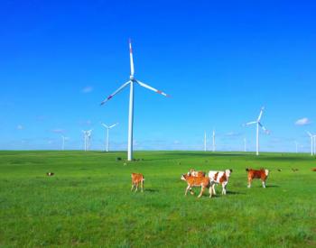 风电主轴龙头行稳致远!2020年淡季不淡!净利润增长1.5倍!