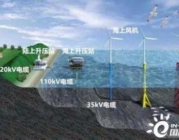 海上风电电磁辐射对海洋生物的影响