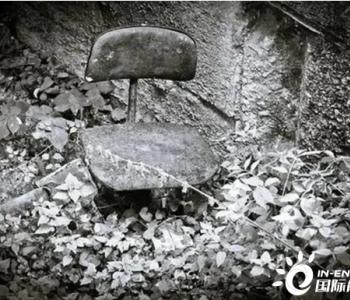 百亿煤企打响新年反腐第一枪:现任副董事长、原董