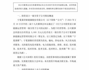 投资5000万元!嘉泽新能设立一级全资子公司