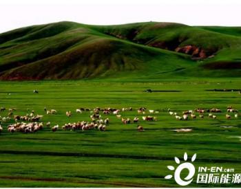 深度观察:能源替代<em>政策</em>利好,内蒙古为何拆除风电
