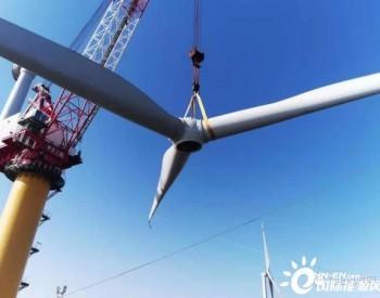 风机安装再创新纪录:中交三航局3天安装4台风机