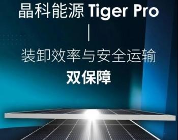 晶科能源Tiger Pro丨实现装卸效率与安全运输双保