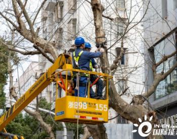 货车挂倒电线杆 浙江宁波市镇海区供电公司全力抢