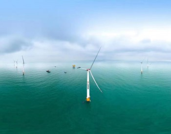 2020年全球海上<em>风电新增装机</em>一半来自中国