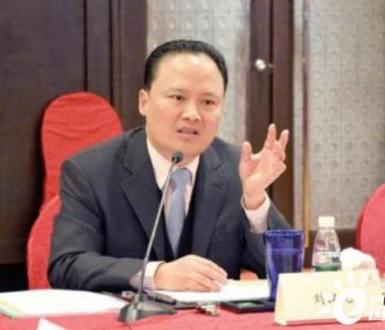 刘汉元代表:不强制要求可再生能源发电项目配置储能系统