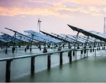 IM虛擬游就2021年風電、光伏發電開發建設事項征求意見
