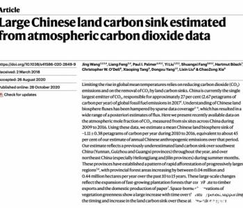 中国陆地生物<em>碳汇</em>规模有多大?